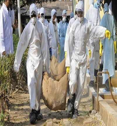 profitability-poultry-farming-nigeria
